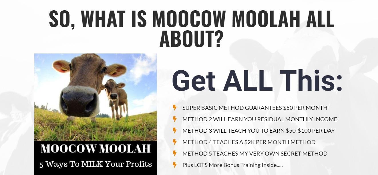 moocow moolah image 2