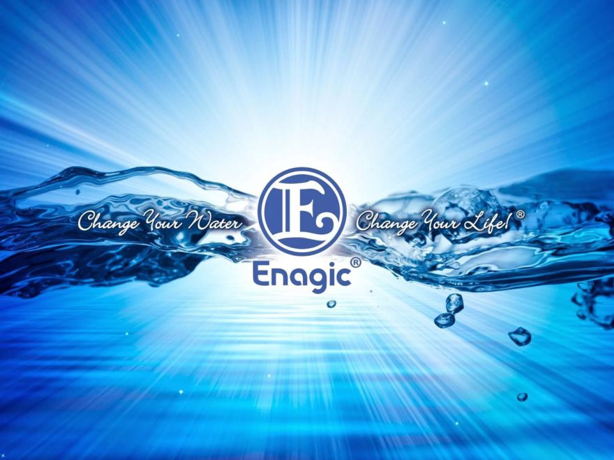Enagic Review